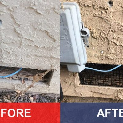 Pest Control - General Pests - Exclusion Vent 4 for Rodents, (Rats & Mice) Before & After.