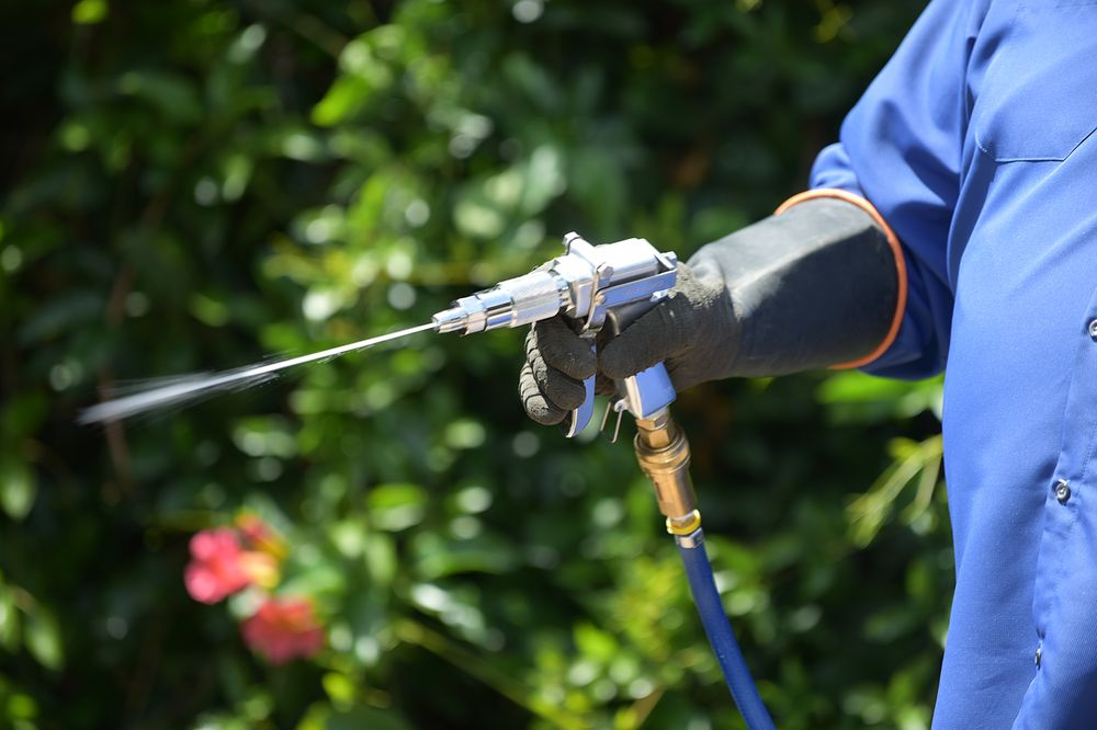 Pest Control - General Pests - Outdoor Treatments Ants, Bed Bugs, Fleas, Spiders, Rodents, (Rats & Mice), Cockroaches, & Termites 1of6.