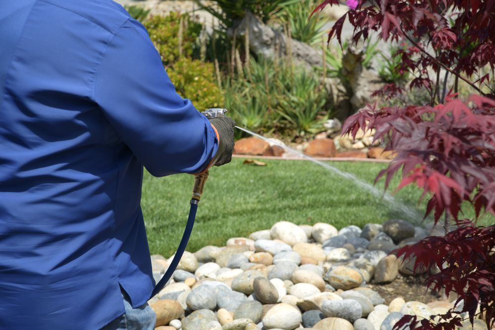 Pest Control - General Pests - Outdoor Treatments - Ants, Bed Bugs, Fleas, Spiders, Rodents, (Rats & Mice), Cockroaches, & Termites